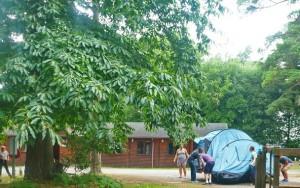 NLP tent move 3