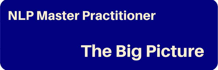 Pegasus NLP Master Practitioner - the big picture