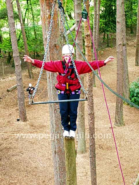 High Ropes - Trapeze Jump or Leap of Faith