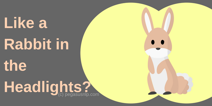 Those Rabbit in the Headlights moments - when you're put on the spot